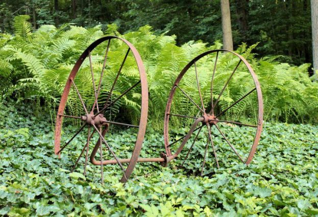 Anna Kittle's lush green garden is accented by rusty vintage farm wheels.