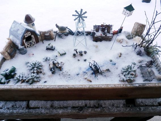 Connie Dee Schnecker's fairy garden, crystalline white in Winter