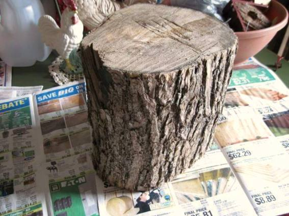 """""""My friends had these pieces of log...They kindly told me to help myself..."""""""