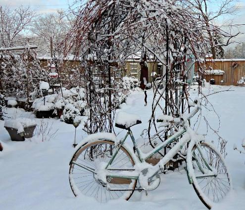 Linda Gladman's Winter bicycle vignette