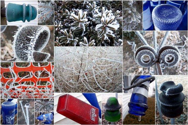Best of Flea Market Winter garden designs