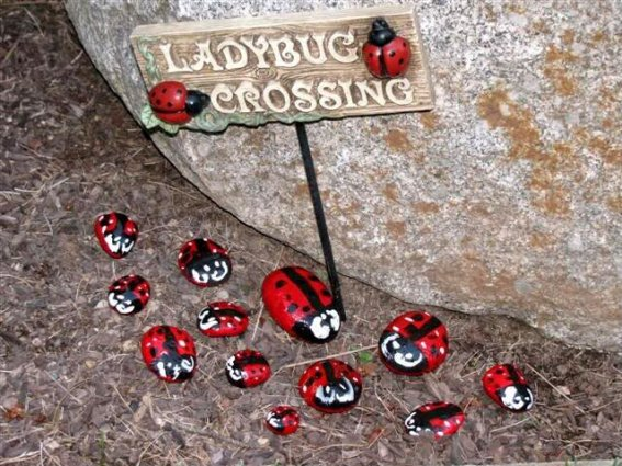 Stone ladybugs made by Kirk Willis's daughter