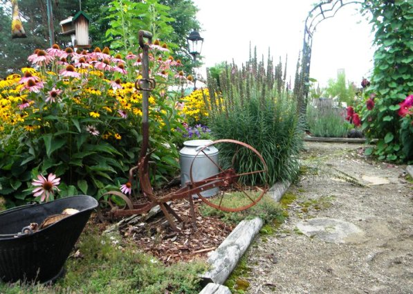 Carol Hall's cultivator planting bed.