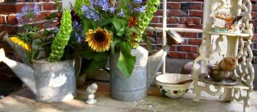 Wanted: More watering cans in the garden