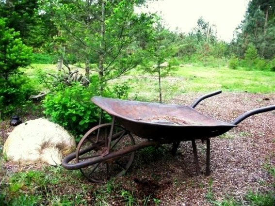 Kirk Willis's vintage wheelbarrow, with the very desirable metal wheel.