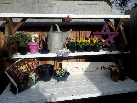 I'm so excited for spring to finally get here, and to be able to use my 'new/old' picnic-table-potting-bench. I found an old pot in the garage, painted it, then painted birdies on an old fence board. I scored a galvanized watering can at an actual Flea Market!  I talked somebody out of their old enamelware colander!