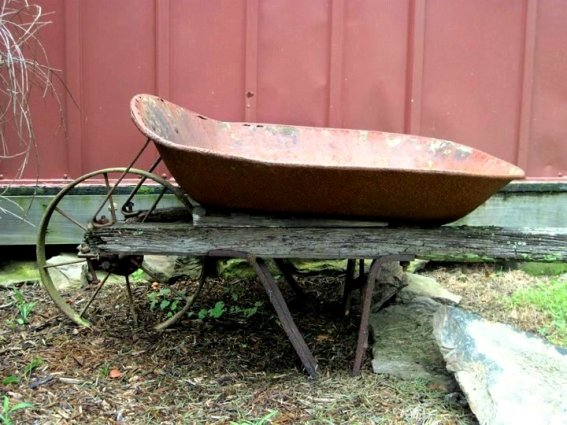 The chicken coop's very old metal wheeled barrow