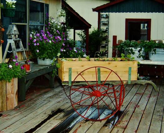 Betty Heffner's quaint 'flower' cart grows vegetables!