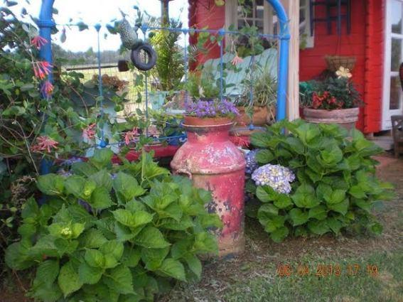 Billie Hayman's red, white and blue garden