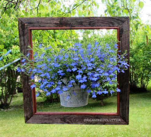 Carlene's brilliant idea to 'frame' a hanging plant, was a hit on her garden blog. Look for more on FMG from Carlene soon...