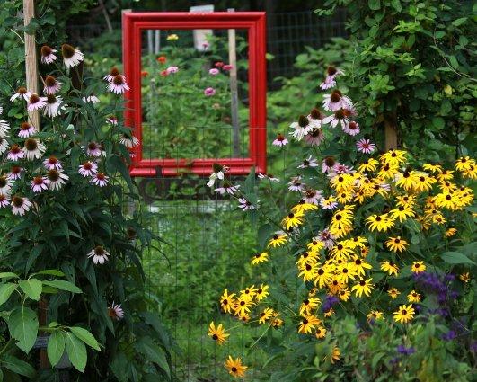 Deborah Sullivan's large red frame simply 'frames' her garden