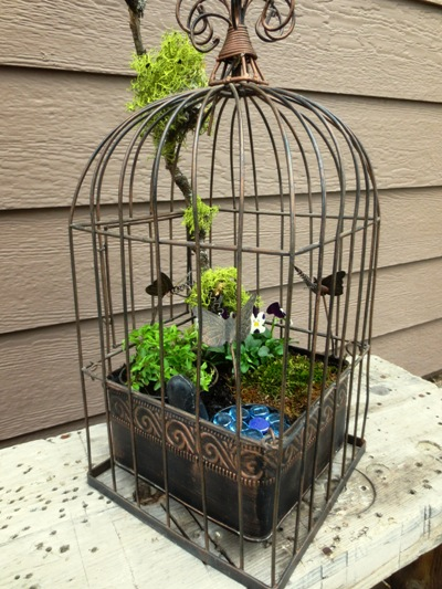 Sue Langley's fairy garden