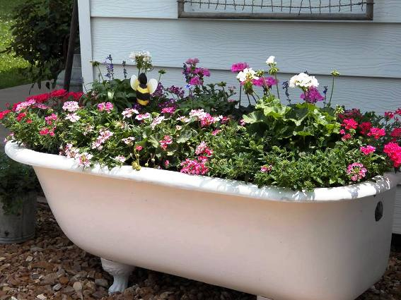 Tammy Blair-Lack's tub overflows with flowers!