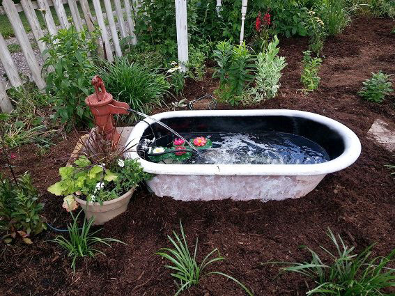 Bathing beauties repurposing bathtubs in the garden for Garden pool from bathtub