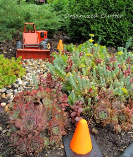 Toy tractor pushes a load of gravel in a succulent bed.