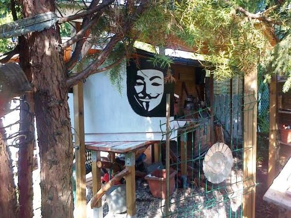 Guy Fawkes peers out through the trees