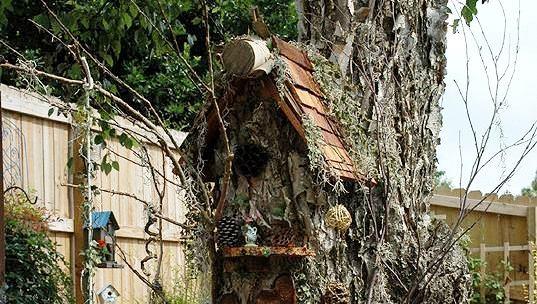 Sherry's tree house