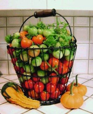 'Mater harvest!