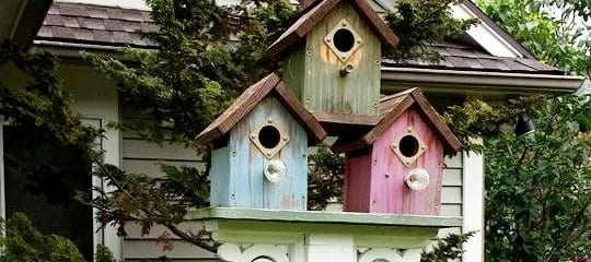 Bird house post