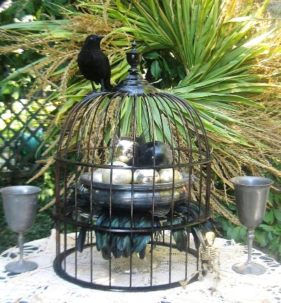 Make an eerie raven and birdcage scene