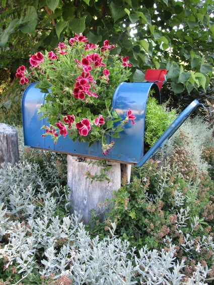 My finished mailbox planter