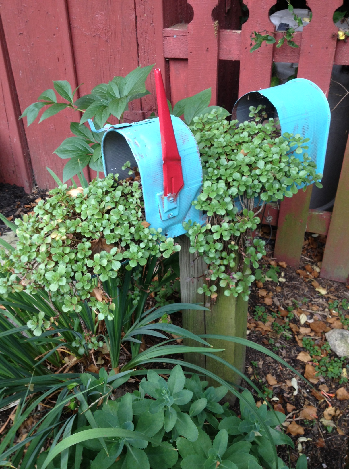 Mailbox Ideas Mailbox Gave me an Idea