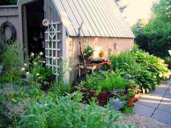 Cheryl Onken's shed is the background for her garden surrounding it
