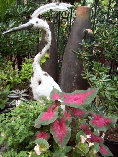 Kathy Gilbert's elegant egret