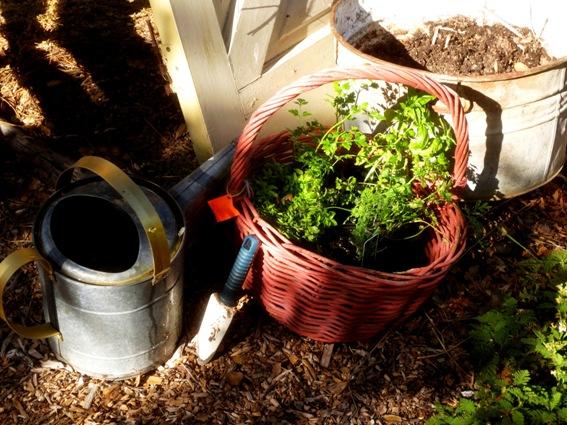 Materials for a basket planter