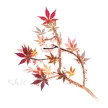 stephie leaves