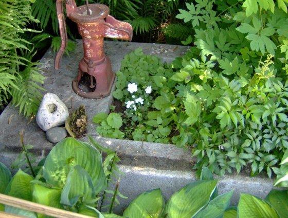 Carol Schickert's trough pump