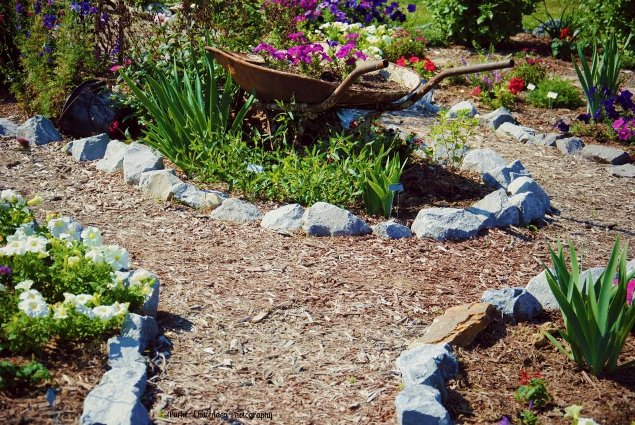 Intriguing gravel paths lead through the garden. Christy found the rocks at a local quarry.
