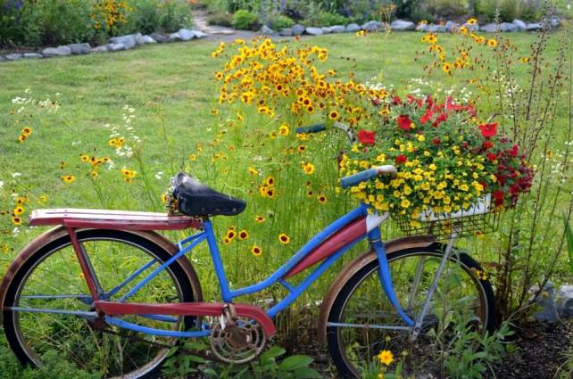 Christy's garden bike and flowers in primary colors