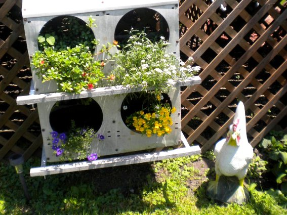 Rachel Schultz's floral chicken boxes