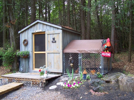 Wanda Bailey's woodsy setting for her chicken house