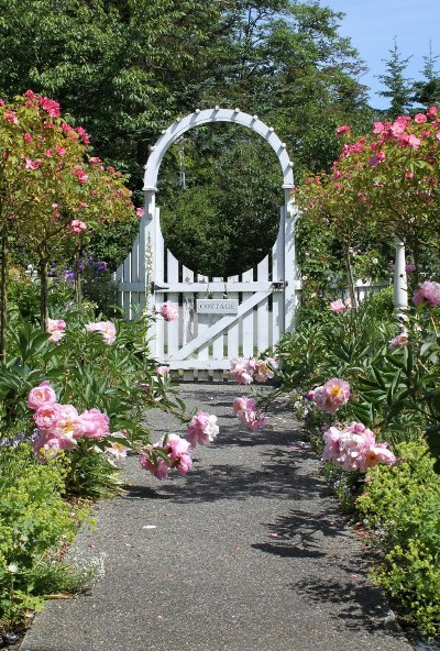 Arbors The Romantic Entrance To Your Garden Flea Market