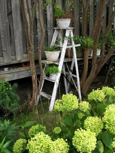 Melody Manahan's ladder brightens a shady corner