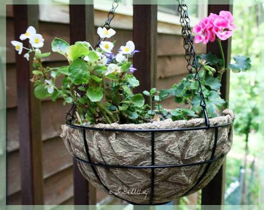 Stephie McCarthy's lined basket