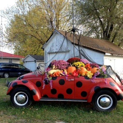 Regina Shultz photographed the 'Bug' in Fall