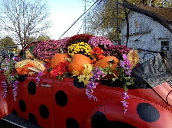 Regina Shultz's close-up of the Fall scene