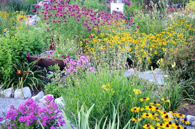 Christy Morrow says, I loved my garden this year!