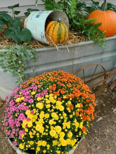 Dandi Gentry Happy Fall scene