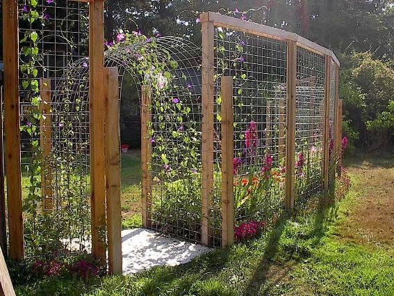 Tina S Terrific Trellis Fence Flea Market Gardening