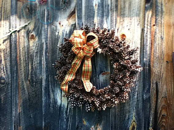 """Hanging on the old barn wall """"From first pine cone to last... about 35 minutes"""""""