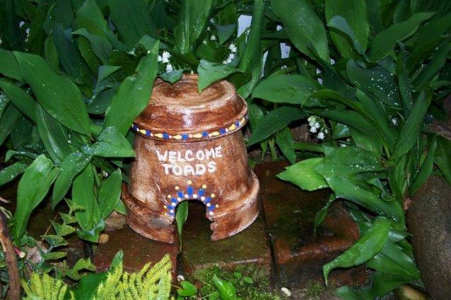 Helen Eyers's cunning little toad house