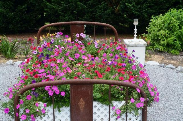 At peak bloom, Christy's flower bed is spectacular!