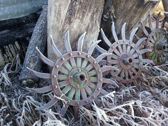 Debra Clark frosty farm cultivator blades