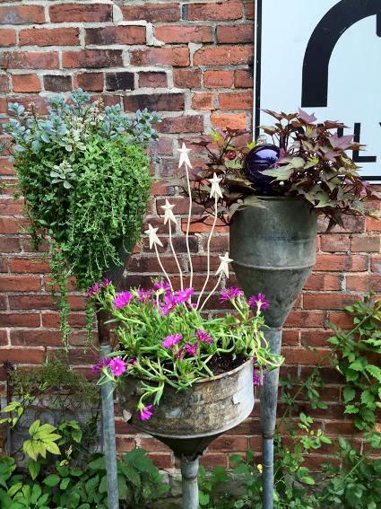 Myra Glandon My funnel planters this year