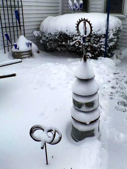 Nancy K. Meyer My funnel tree in winter