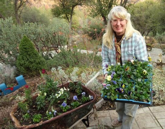 Me, planting pansies in the wheelbarrow. Notice my gardening uniform.